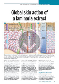 Global-skin-action-of-a-laminaria-extract---Personal-Care-January-2015